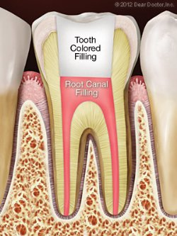 Dental Services Cosmetic Family Dentist In Portales
